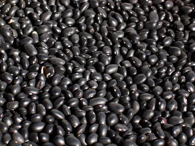 black beans - background